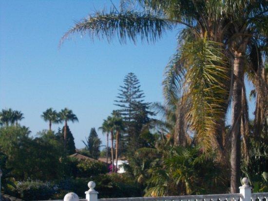 Globales Cortijo Blanco Hotel: Lovely view!