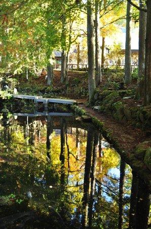 Choanji Temple : 入口付近の池