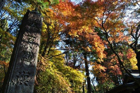 Choanji Temple : 五百羅漢