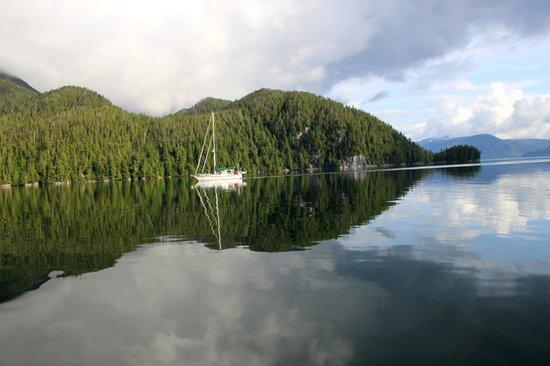 Spirit Bear Lodge: Breathtaking scenery