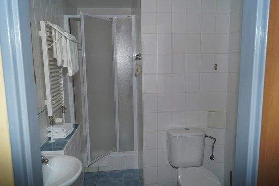 Cloister Inn Hotel: Санузел
