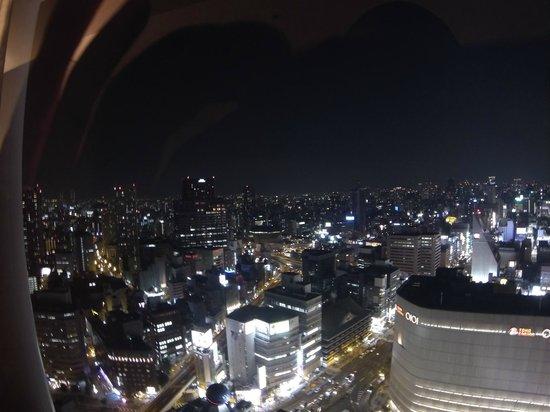 Swissotel Nankai Osaka: View from the room