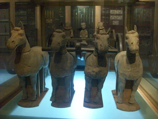 Western Han Dynasty Terracotta Warriors : i cavalli di terracotta nel museo acquatico