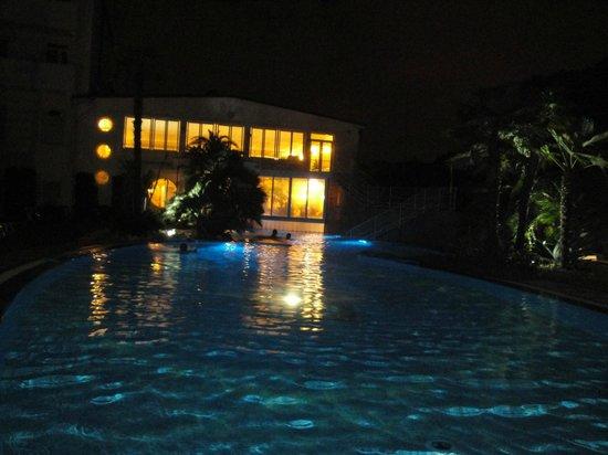 Quisisana Hotel Terme: Piscina esterna in notturna