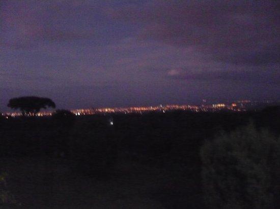Intermezzo del Bosque : Lights in the dark