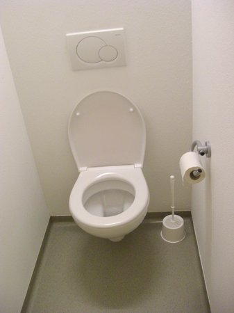 Ibis budget Lugano Paradiso: Bathroom
