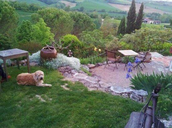 Cuq en Terrasses: gardens