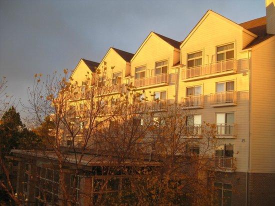 Hyatt Regency Chesapeake Bay Golf Resort, Spa & Marina: View of rooms during sunrise