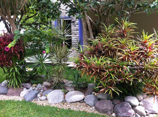Laureles Hotel: jardin