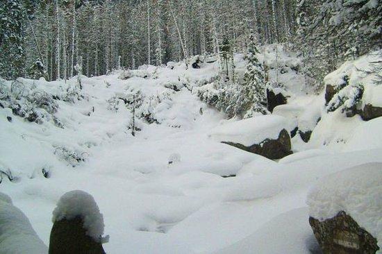 Villa Krejza: Las Cataratas en invierno ni se ven