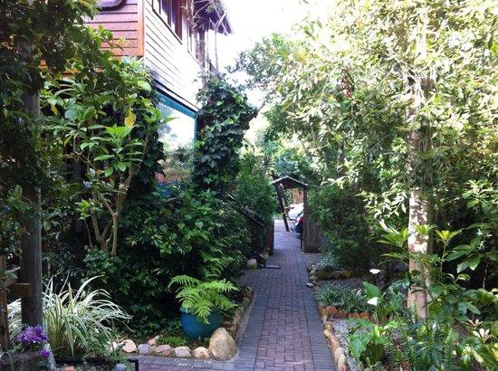 9 on Heron Knysna Bed & Breakfast: Garden