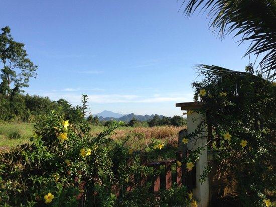 Leelawadee Garden Resort: view