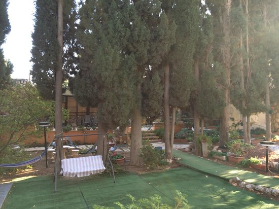 Safed Inn: Tuin