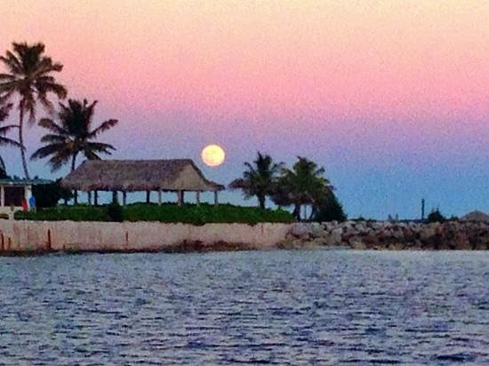 Bimini Magical Vacation B & B : Sailboat Full Moon at Sunset