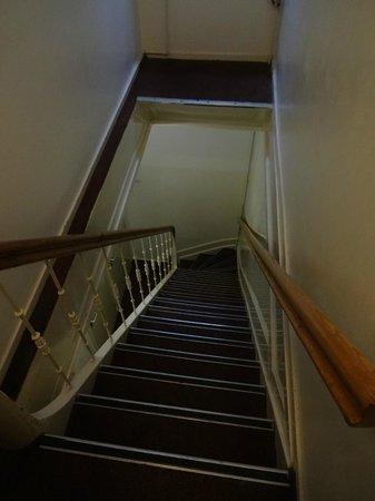 Hotel Hortus: Escaleras