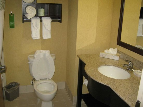 Hampton Inn & Suites Orlando International Drive North : As clean as it gets