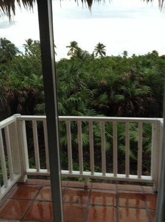 Sapphire Beach Resort: view from back deck