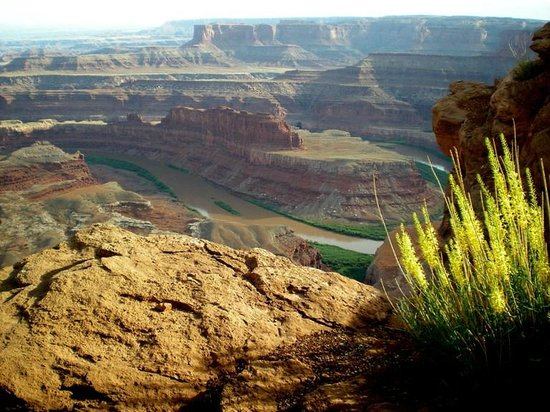 Moab, UT: Dead Horse Point
