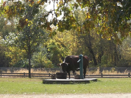 Oliver Kelley Farm: drinking water