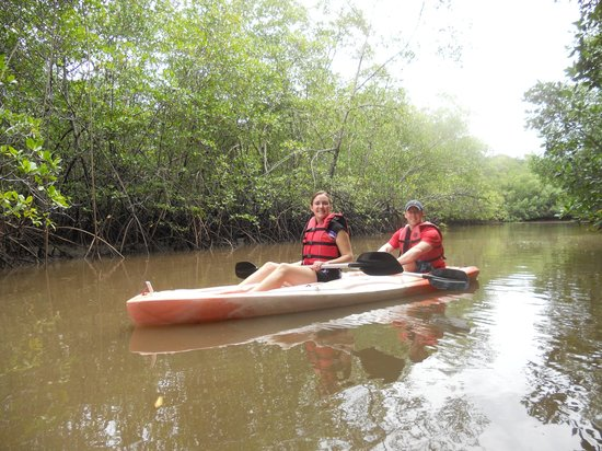 Vista Hermosa Boutique Bed & Breakfast : Kayaking in the virgin mangroves