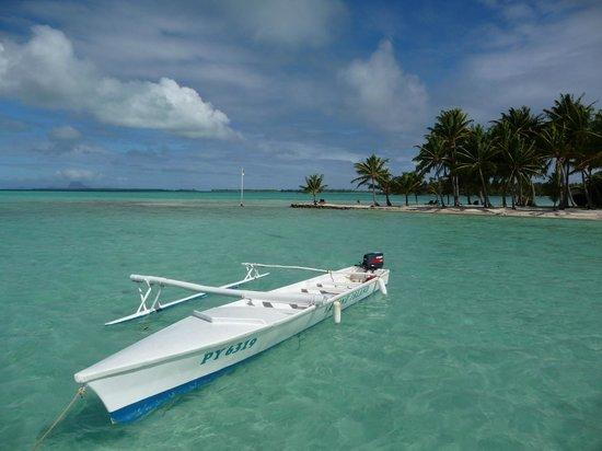 Vahine Private Island Resort: paradise