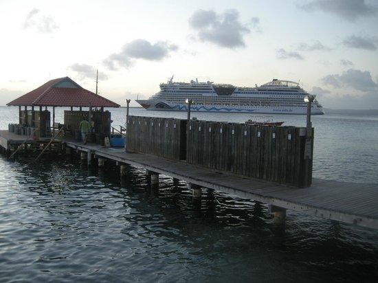 Divi Flamingo Beach Resort and Casino : Dive lockers