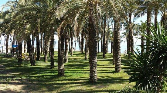 Playa La Carihuela: parco giochi