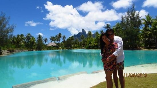The St. Regis Bora Bora Resort : Hotel Lagoonarium