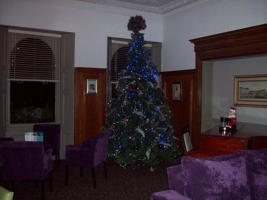 Bay Torbay Hotel: Tree in one of the lounges