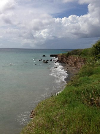 Montpelier Plantation & Beach: Nevis Coast