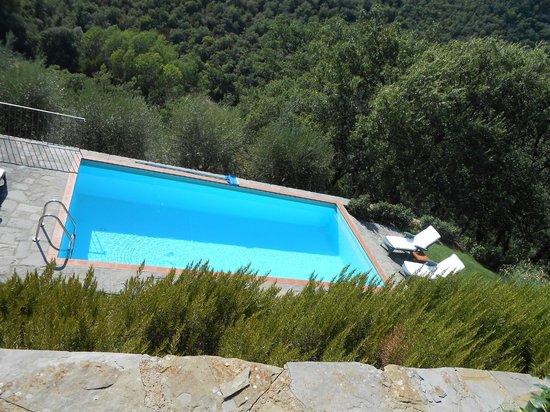 Relais San Pietro in Polvano : La piscina