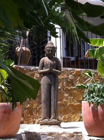 Hostal Buenavista: gardens