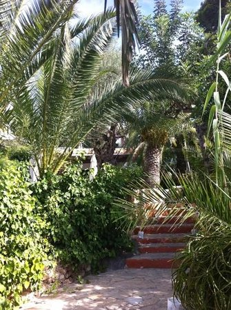 Hostal Buenavista: gardens @ Buenavista