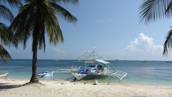 Ocean Vida Beach & Dive Resort: Einfach nur traumhaft