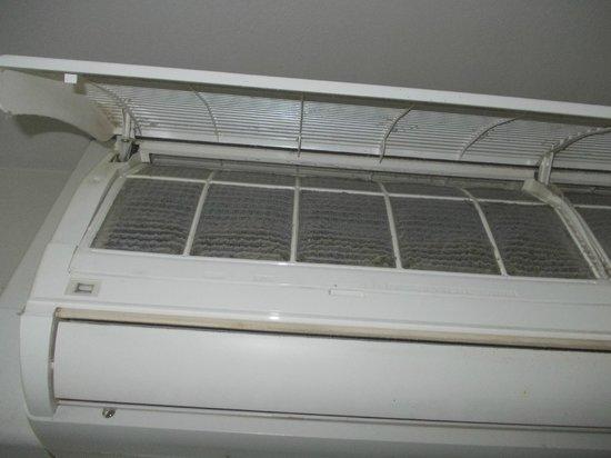 Hotel Villa La Reggia : Polvere sui filtri del condizionatore