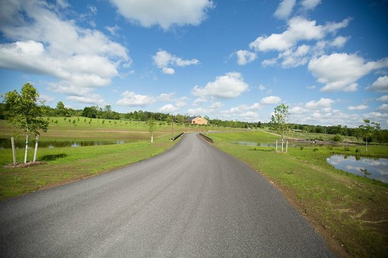 Owera Vineyards property