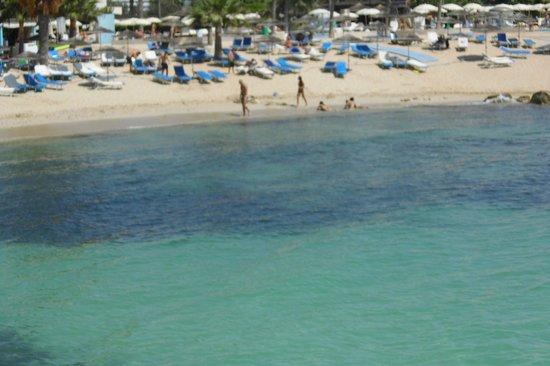 Nissi Beach Resort: The fabulous beach