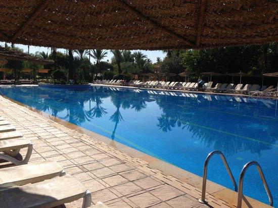 Club Palmeraie Marrakesh: Piscine