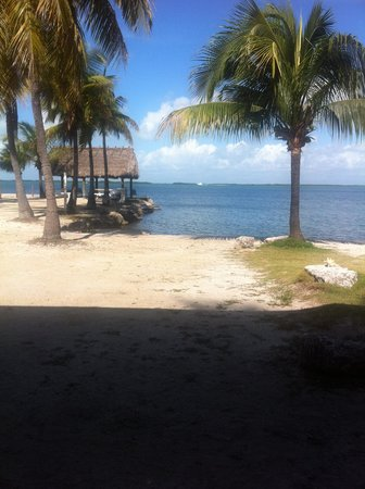 Rock Reef Resort: From my Daughter's Cabin Chair Swing