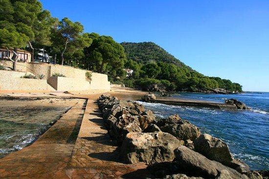 Hipotels Eurotel Punta Rotja & Spa: Hotel garden stretches to waterfront