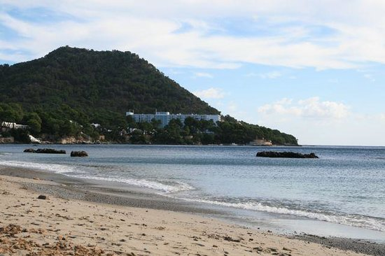 Hipotels Eurotel Punta Rotja & Spa: Large swimming beach nearby