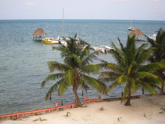 Caye Caulker Condos: View from the terrace (mid-ground floor)
