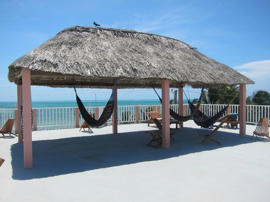 Caye Caulker Condos : Hammocks to relax on the roof