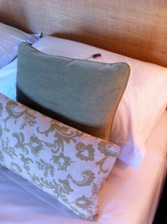 Wild Olive Guest Lodge: Lavender on Pillow