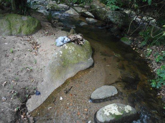 Chales Refugio da Agua Branca: riacho