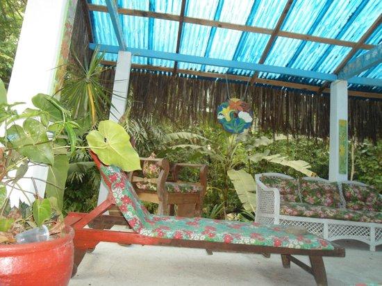 Chales Refugio da Agua Branca : área de leitura ou curtir a natureza
