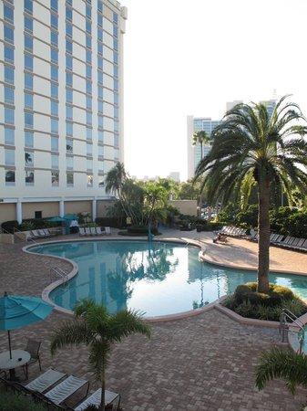 Rosen Plaza Hotel : Pool area