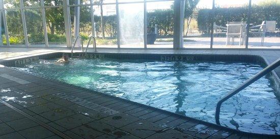 Hilton Garden Inn San Antonio Airport South: The great indoor pool.