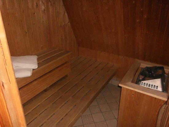 Roxford Lodge Hotel: sauna