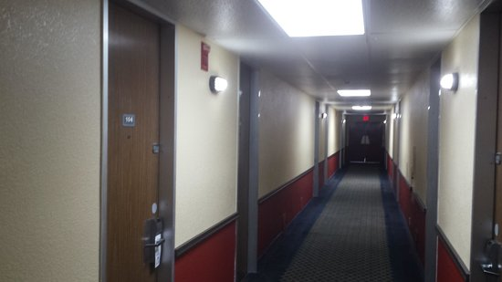 Economy Inn: hallway....I love the doors